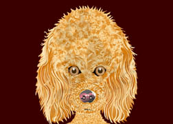 Madison, the Poodle dog wall art. Item#: MPDL-P303